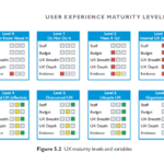 A Chapter in Review: User Experience Maturity Levels